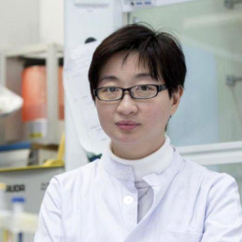 Prof. Ying CHAU